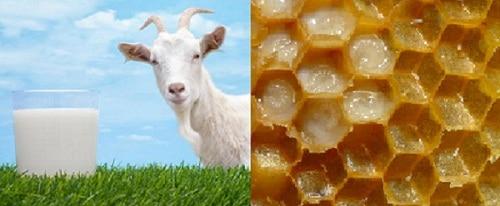 สรรพคุณนมผึ้ง