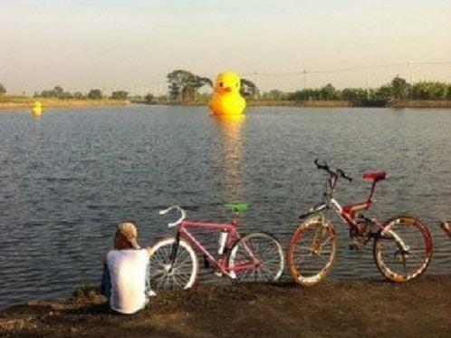 สถานที่ปั่นจักรยานสวยๆ 2
