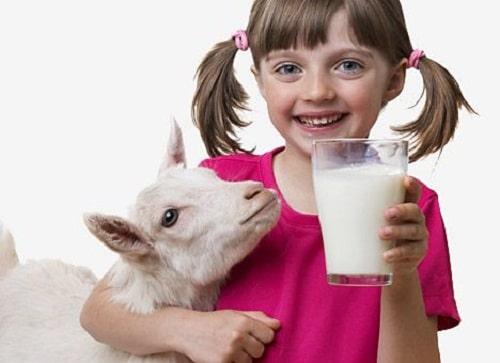 ประโยชน์ของนมแพะ
