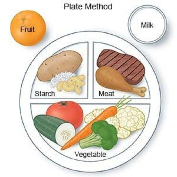 สูตรลดความอ้วน plate model