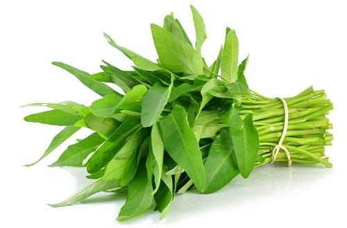 สรรพคุณ ประโยชน์ของผักบุ้ง
