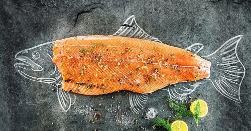 ประโยชน์ของปลา