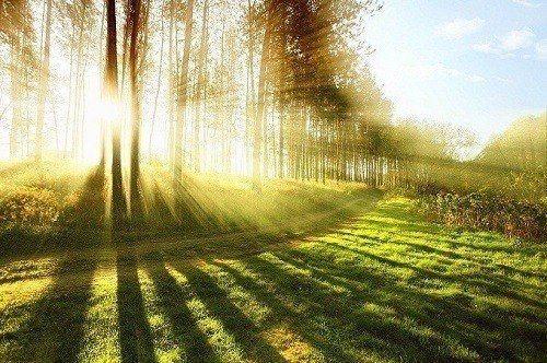 แสงแดด ประโยชน์ปรับสมดุลในร่างกาย